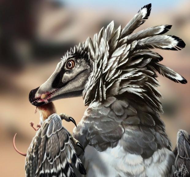 velociraptor_by_deetta-d7bii2t