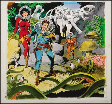 wally_wood_5