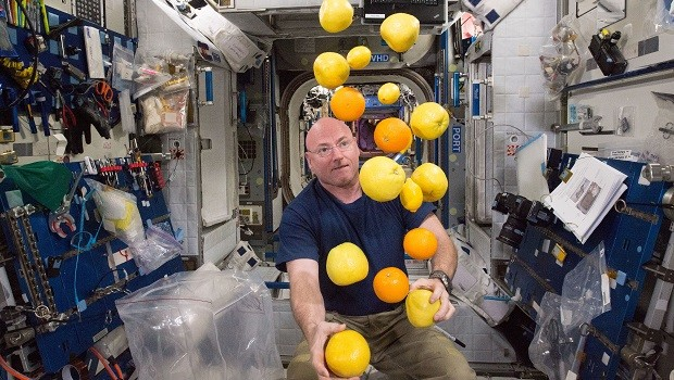 NASA astronaut Scott Kelly corrals the supply of fresh fruit that arrived on the Kounotori 5 H-II Transfer Vehicle (HTV-5.) Visiting cargo ships often carry a small cache of fresh food for crew members aboard the International Space Station. (Photo by NASA)