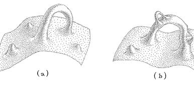 3046-yildizlararasi-filminin-bilimsel-arkaplani-14