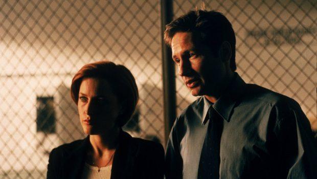 Fox-Mulder 3