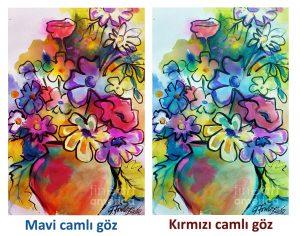 renk_farklari
