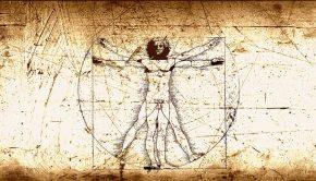 da vinci anatomi
