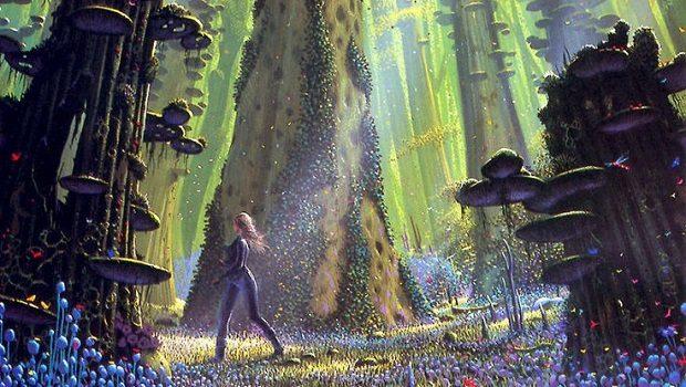 dünyaya orman denir