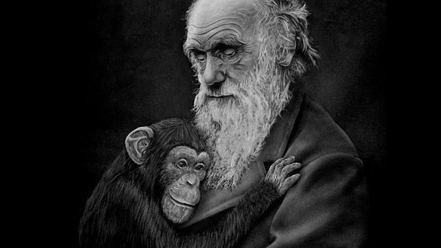 darwin evrim