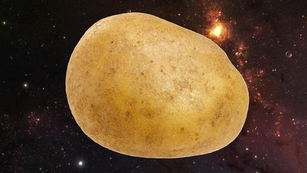 patates kapak