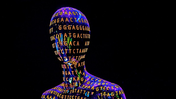 insan genom projesi